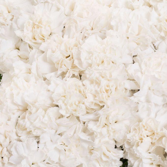 Cruz de hortensias blancas - Centros difuntos - Día de todos los Santos - FH Floristería - Fernando hijo - Flores y decoración - Murcia